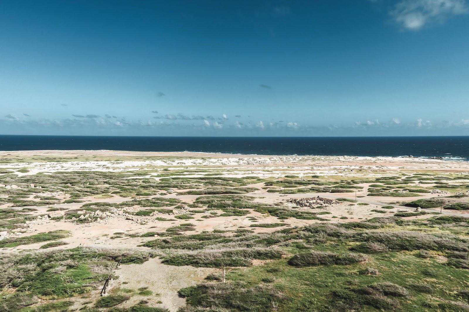 Aruba Desert Landscape