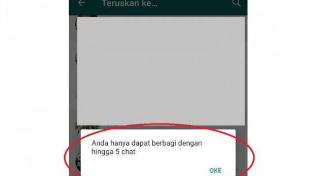 WhatsApp Tak Lagi Bebas, Jumlah Forward Dibatasi Hanya 5 Kali