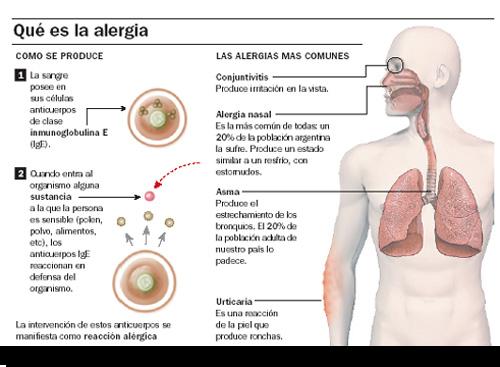 Síntomas más comunes de la alergia primaveral: rinitis, urticaria, conjuntivitis, etc