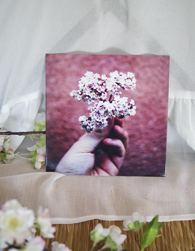 Webprint fotokaarten