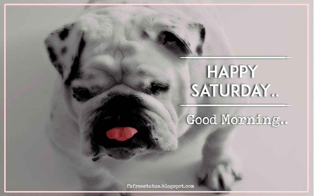 Happy Saturday. Good Morning.