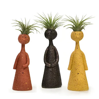https://www.lowes.com/pd/LiveTrends-3-Pack-3-Pack-Air-Plant-Mixed-in-Clay-Planter-L21596/1000223837