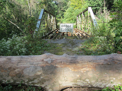 Old bridge along the Kelly's Run Trail