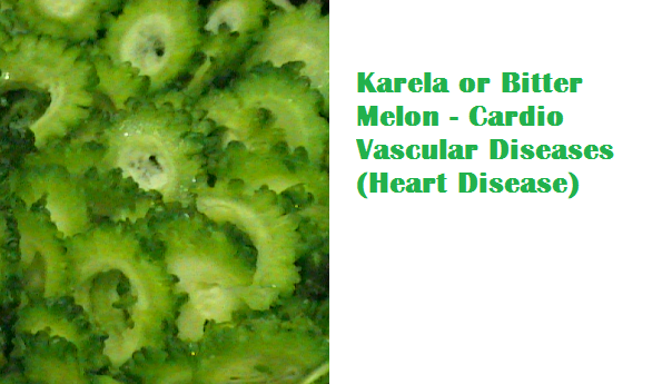 Health Benefits Of Karela or Bitter Melon - Cardio Vascular Diseases (Heart Disease)