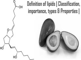Definition of lipids