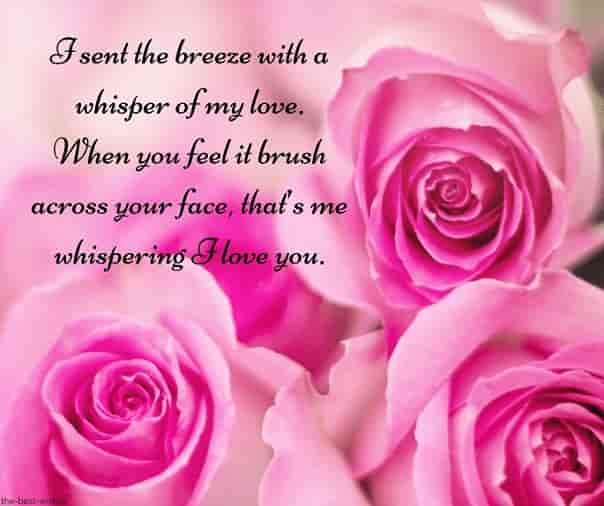 cute text msg with roses
