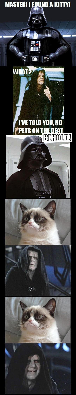 Funny Star Wars Grumpy Animal Picture Darth Vader