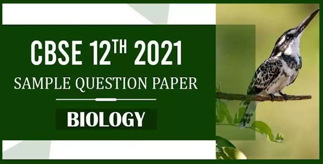 12 Class Biology Sample Paper PDF Download