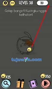 Gelap banget! kucingku nggak kelihatan! brain test