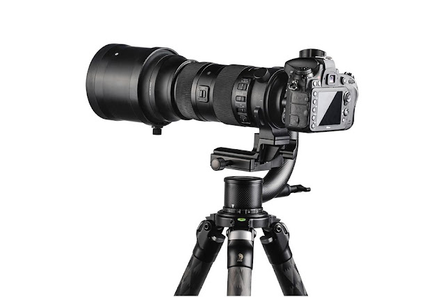 Sunwayfoto GH-01 Gimbal w/ Nikon camera and telephoto