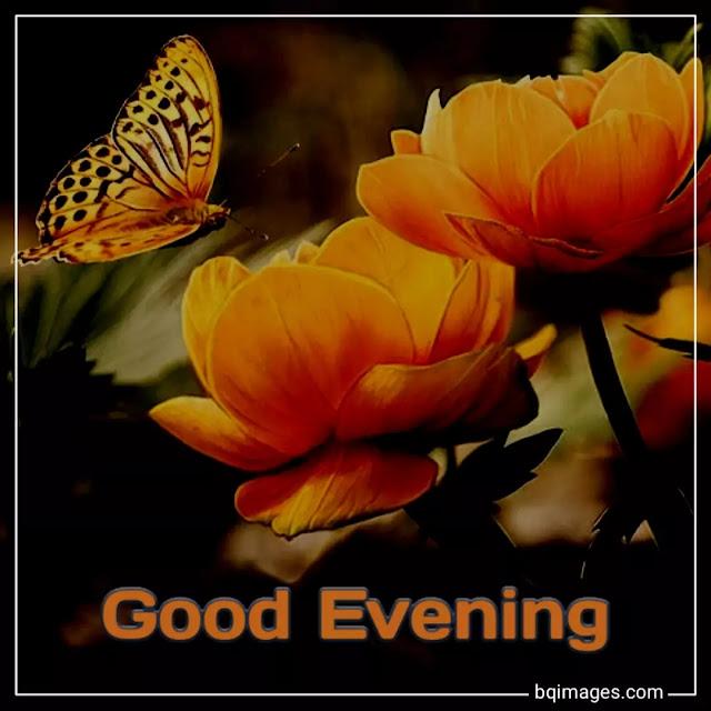 image of good evening