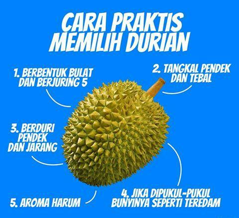 Tips Memilih Durian