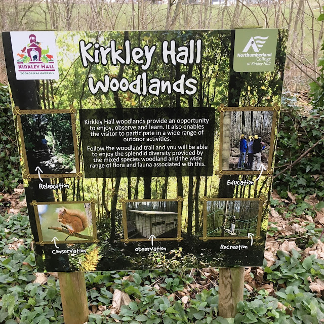 A Family Day Out at Kirkley Hall Zoological Gardens, Northumberland