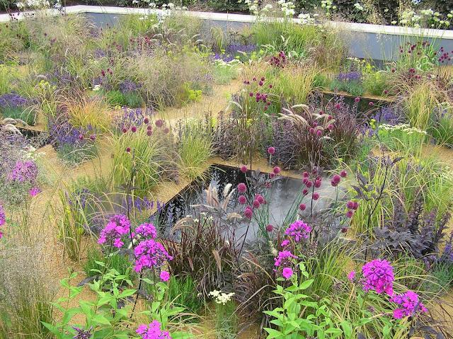 ogród bylinowy, oczko wodne