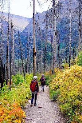 St. Mary Falls Trail, Glacier National Park