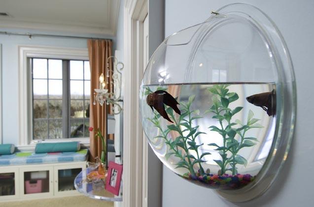 Decora hogar peceras o acuarios para tu decoraci n - Casas con peceras ...