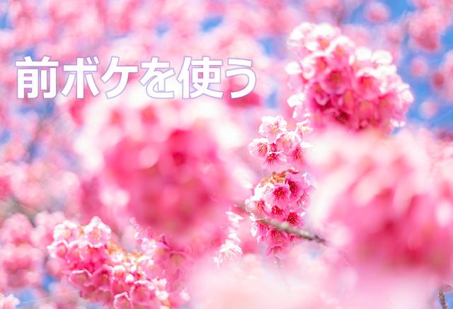 前ボケ,絞り,F値,桜