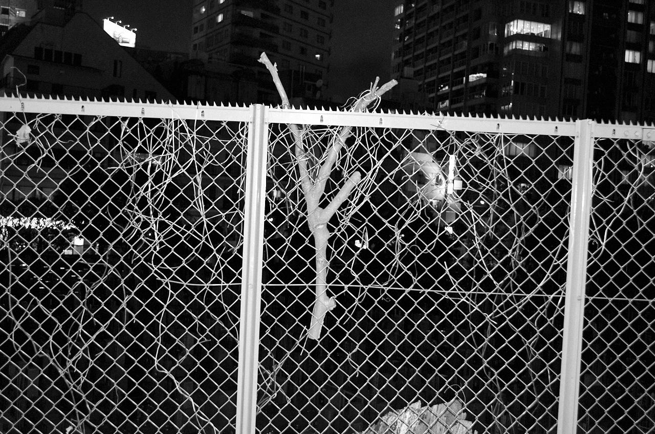 Shinjuku Mad - Your scars, my scarf 14