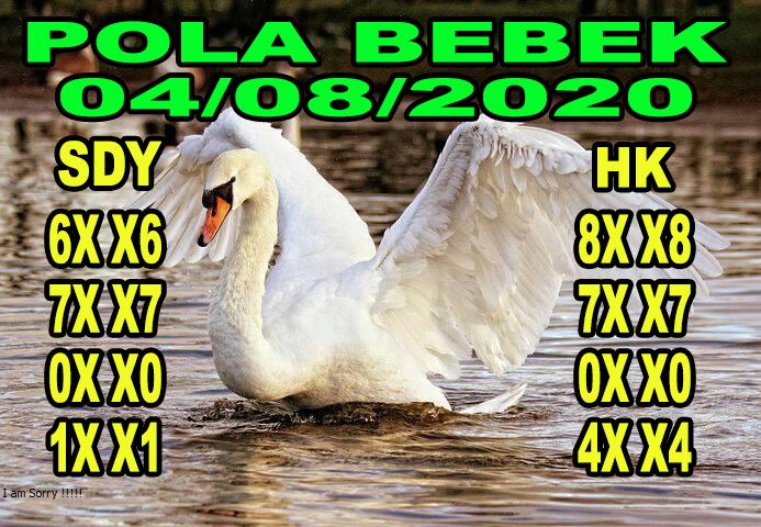 syair sydney pola bebek 4 agustus 2020