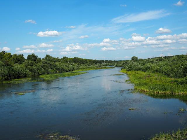 Река Иня (вид с моста возле о.п. Репьево)