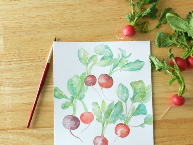 Original Watercolor Radishes Paintings by Elise Engh: growcreative