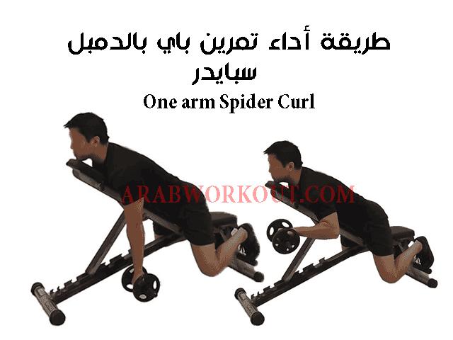 تمرين باي بالدمبل سبايدر