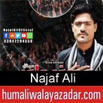 https://www.humaliwalyazadar.com/2018/09/najaf-ali-nohay-2019.html