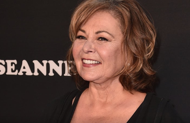 Roseanne Barr Teases TV Comeback: 'I've Already Been Offered So Many Things'