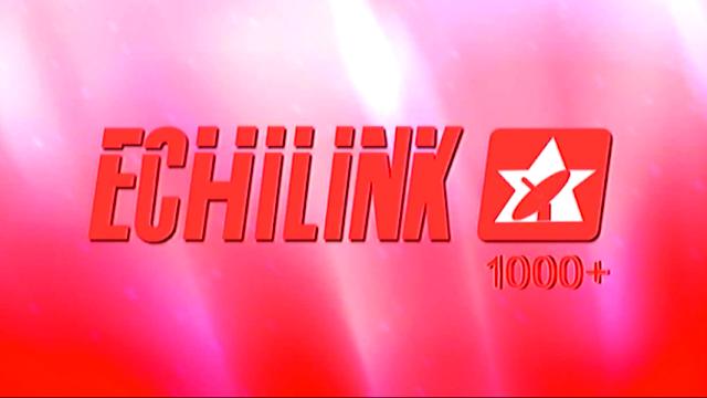 ECHOLINK 1000+ HD RECEIVER 1506G SET TOP BOX NEW SOFTWARE FREE DOWNLOAD