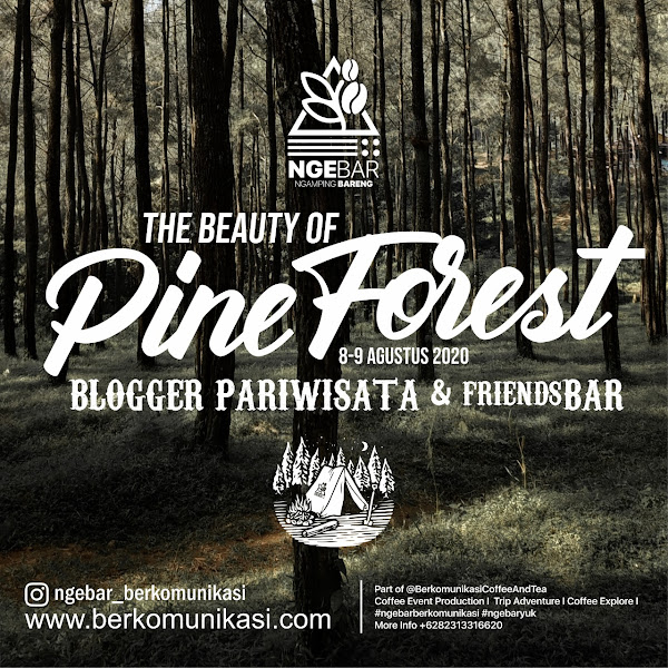 The beauty of pine forest tema ngebar bersama blogger pariwisata