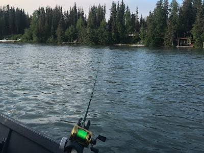 Fishing for King Salmon on The Kenai River