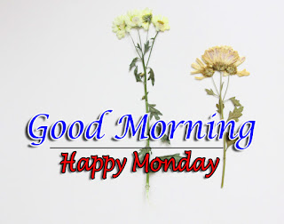 New Good Morning 4k Full HD Images Download For Daily%2B10