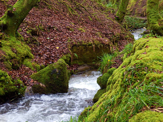 Stream in Gover Valley, Cornwall