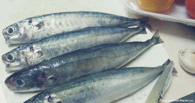 ikan basung