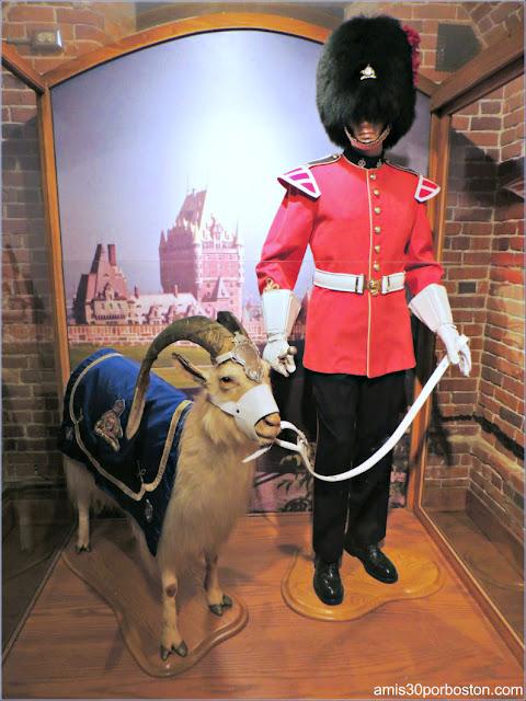 Uniforme de Gala y la Cabra Batisse en el Museo de la Ciudadela de Quebec