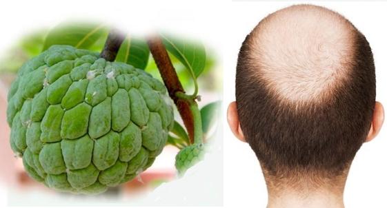 उड़े हुए बाल इस फल की मदद से आएंगे वापिस, जानिए कैसे