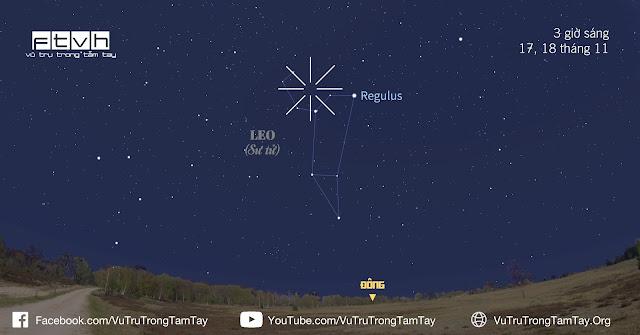 Nhìn về bầu trời hướng đông từ 2 giờ sáng để quan sát mưa sao băng Leonid tỏa ra từ chòm sao Leo (Sư Tử).