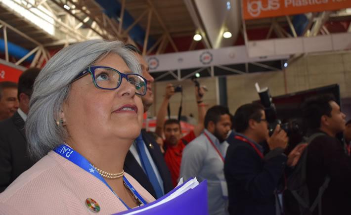 Titular de la SE, Graciela Márquez Colín. (Foto: Vanguardia Industrial)