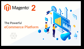 Magento 2 for your Ecommerce Business