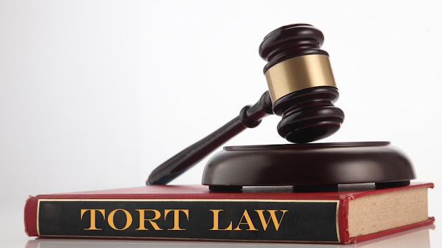 Intentional and Negligence Torts: A Complete Guide to Tort Cases