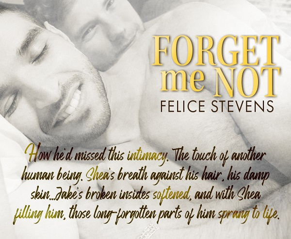 How he'd missed this intimacy. The touch of another human being. Shea's breath against his hair, his damp skin… Jake's broken insides softened, and with Shea filling him, those long-forgotten parts of him sprang to life.