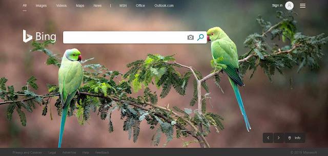 Mesin Pencari Bing