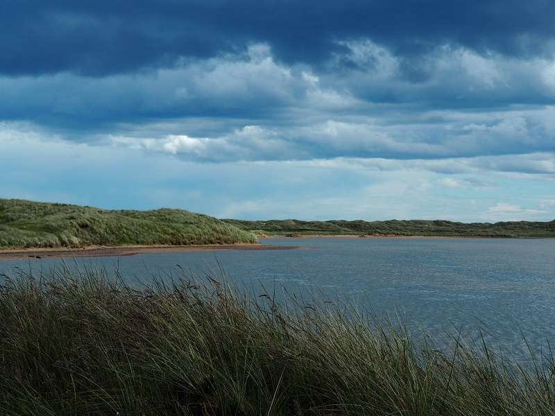 Dunes and sea view from Forvie Nature Reserve