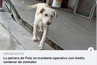 https://www.farodevigo.es/portada-pontevedra/2020/03/30/perrera-poio-mantiene-operativa-medio/2269676.html?platform=hootsuite