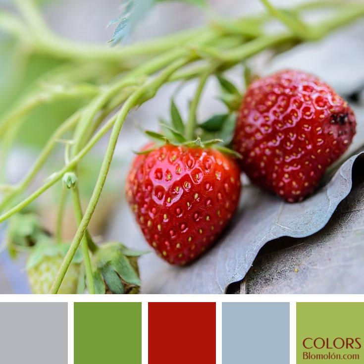 variedad_en_color_paletas_de_colores_106