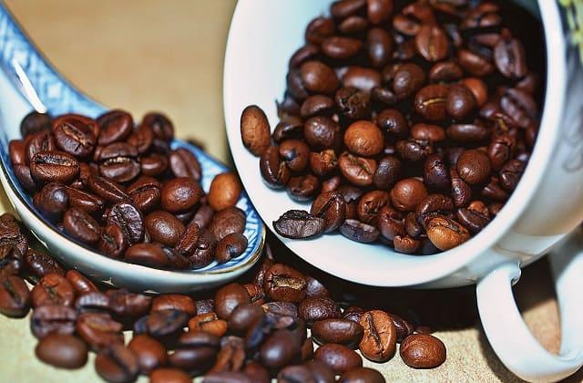jenis-jenis kopi yang terkenal
