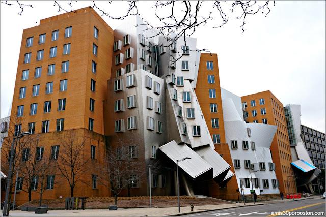 Centro Stata del MIT, Cambridge