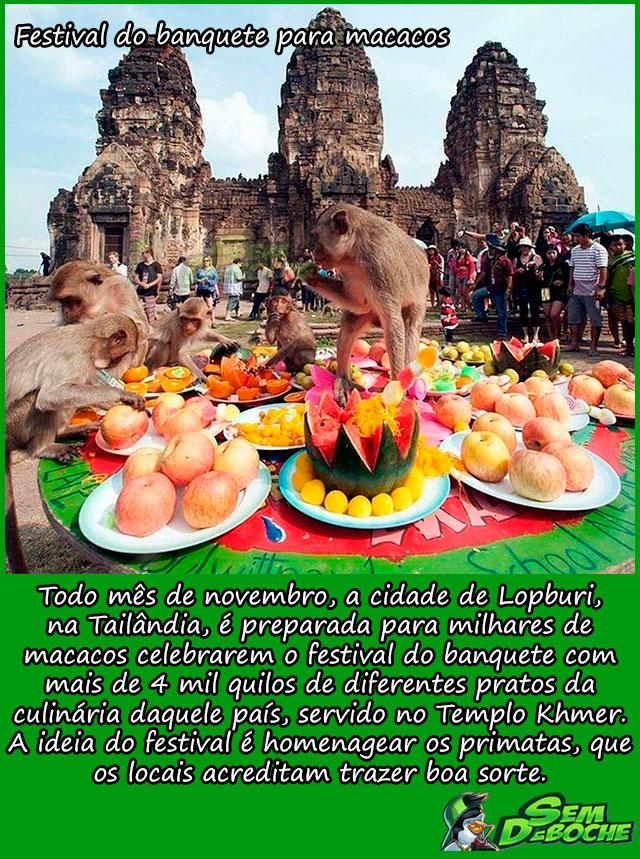 FESTIVAL DO BANQUETE PARA MACACOS