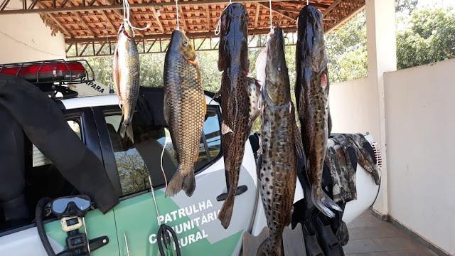 Polícia Ambiental multa quatro homens em R$ 3,9 mil por pesca subaquática