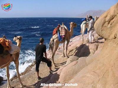 Abu Galum - Dahab